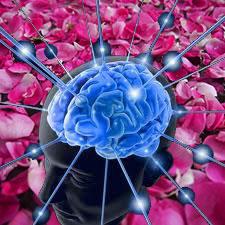 brain_rose-1